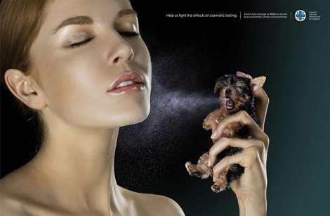 anuncio-animal-13