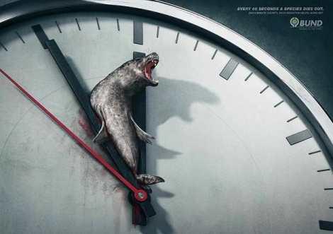 anuncio-animal-3